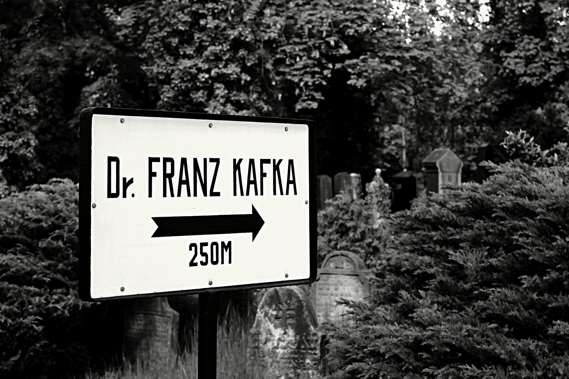 Kafka y el CGE con su sistema electoral